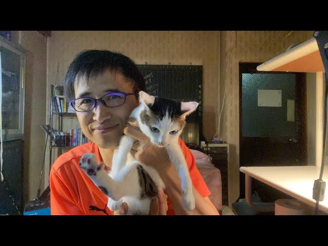 週一Live 猫のいる談話室919