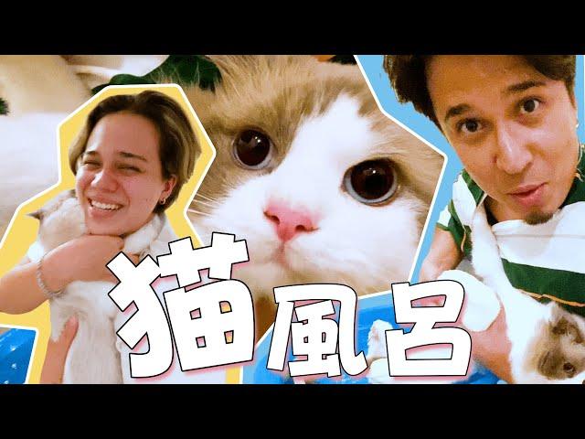 木村兄妹、愛猫ハチをお風呂に入れる!