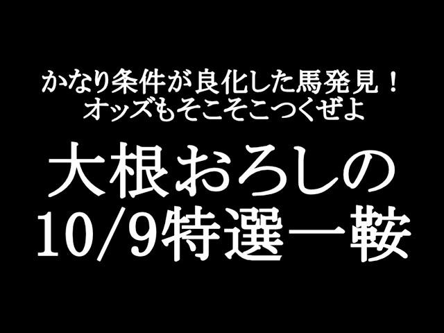 【競馬予想】10月9の特選一鞍【大根おろし】