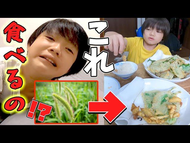 英検直前に事件勃発!中間反抗期&偏食の弟が遂に雑草を天ぷらにして食べだした…