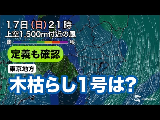 【定義も確認】東京地方、木枯らし1号の可能性は?