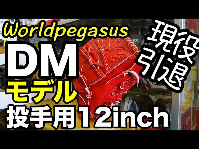 「DMモデル」Worldpegasus グランドペガサスTOP【#2874】
